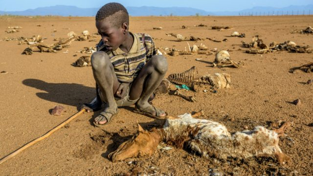 A first-hand look at signs of hunger in Turkana, Kenya, and how the East Africa food crisis is changing the lives of people there.