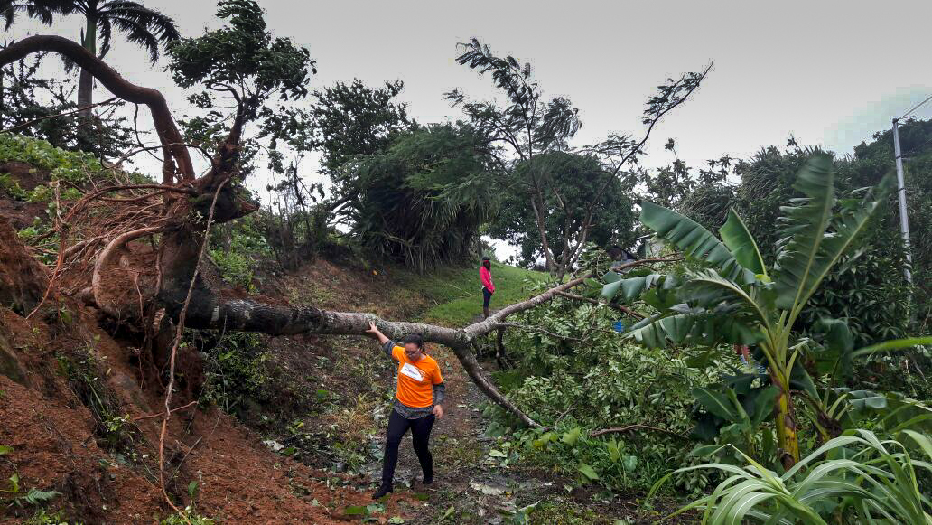 World Vision staff are working to help respond to downed trees and damage in the Dominican Republic following Hurricane Irma. Destruction in the wake of Hurricane Irma in the Dominican Republic wasn't as bad as predicted. (©2017 World Vision)