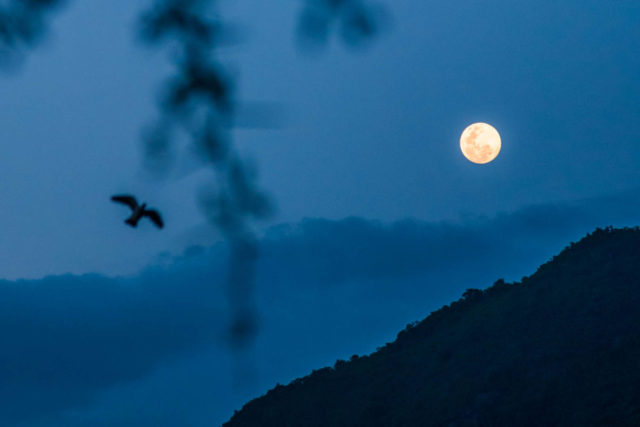 Humanity has never brought clean water to everyone. Now there's a goal to do so, and World Vision is playing a leading role in achieving this moon shot.