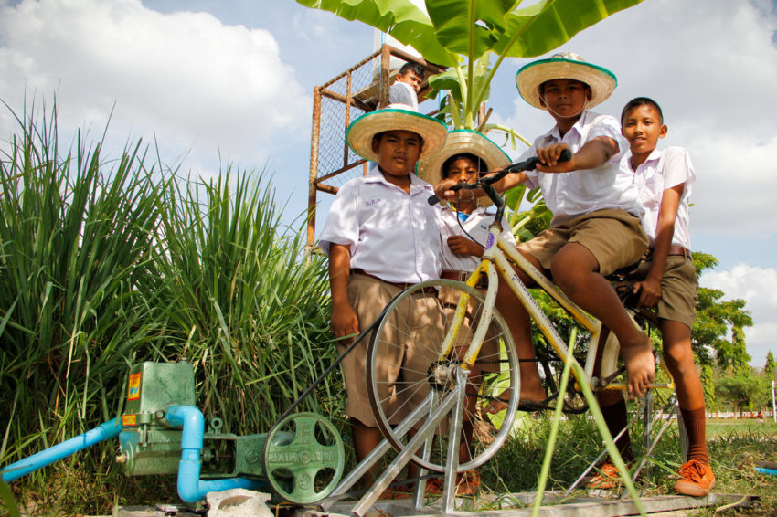 Through student innovations and school support, a World Vision-funded lunch program became an award-winning farm, with endless learning and income prospects.