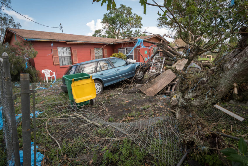 Hurricane Irma's destructive winds uprooted this tree, which took a parked car with it. (©2017 World Vision/photo by Eugene Lee)