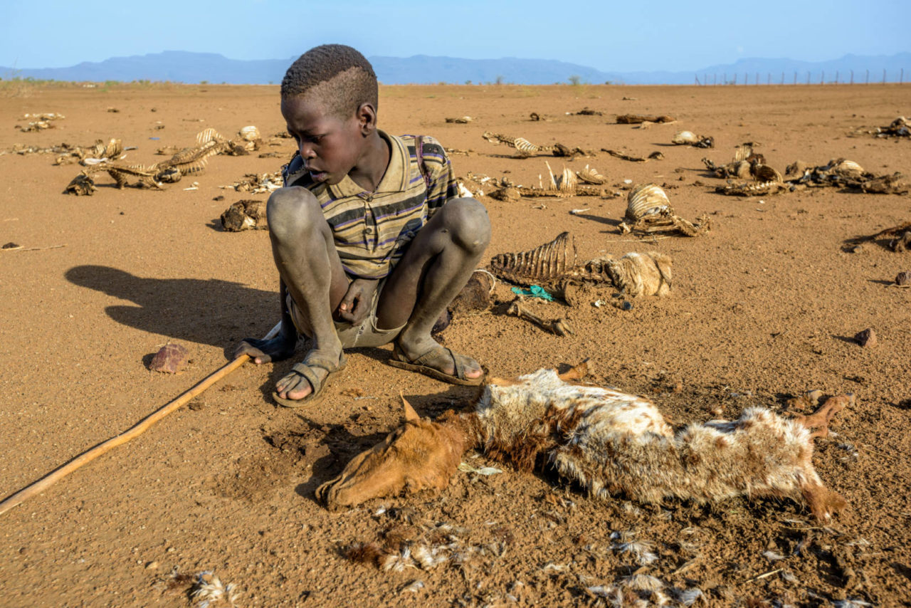 Kenyan boy crouching over and mourning his goat that died in drought.