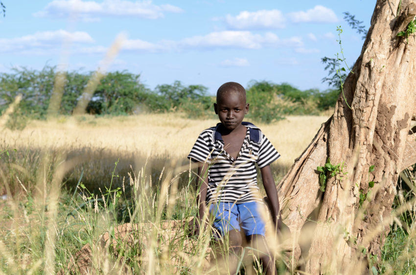 """I dream of eating rice,"" says 5-year-old Frank. Frank's family has only eaten corn porridge for several months. They've already cut out, and due to food shortages, they skip breakfast. Frank's family farmsare farmers in northern Kenya. They used to have 50 goats, but they all died due to the drought. The crops they planted withered and died too, failing to produce a harvest. The family earns a little money by cutting and bundling dry grass to sell to neighbors whose goats lived. World Vision is providing clean water, food, and nutritional aid to their community. (©2017 World Vision/photo by Mark Nonkes)"