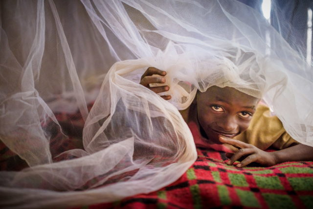 In Zambia, 7-year-old sponsored child Steven no longer suffers from malaria now that his family has mosquito nets. (©2014 World Vision/photo by Jon Warren)
