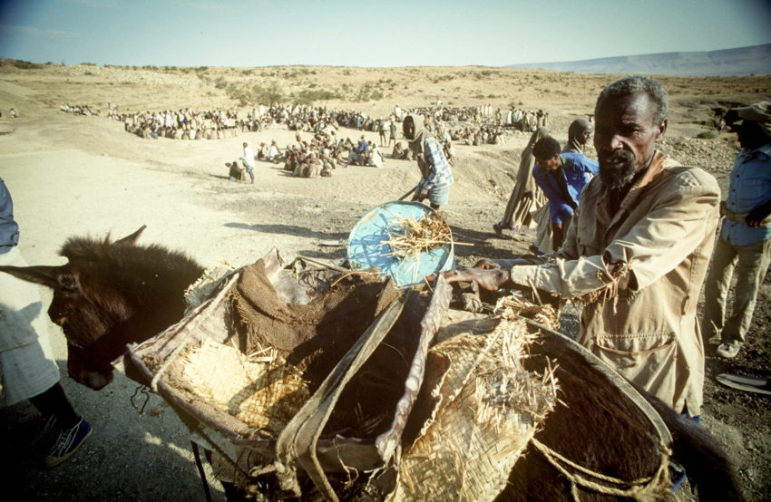 Ethiopia cash for work project. Men and women build a water catchment system.