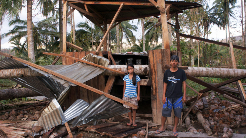 2012 Typhoon Bopha destroyed their home and coconut plantation in the Philippines. Tony Mar, 19, and his sister Genevieve, 11, stand near one of the 100 downed coconut trees.