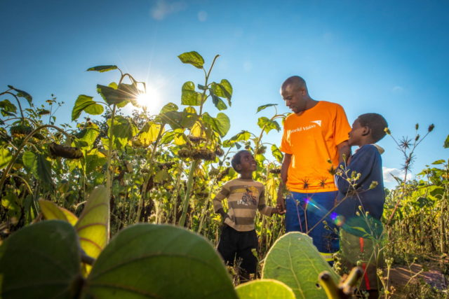 A World Vision staff member walks through a sunflower field with two brothers.