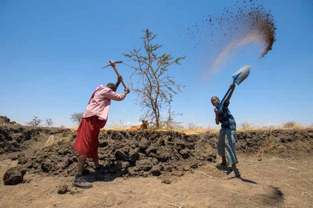 Aloisi Lomyani's whole family helps dig a water pan as part of World Vision's THRIVE program.