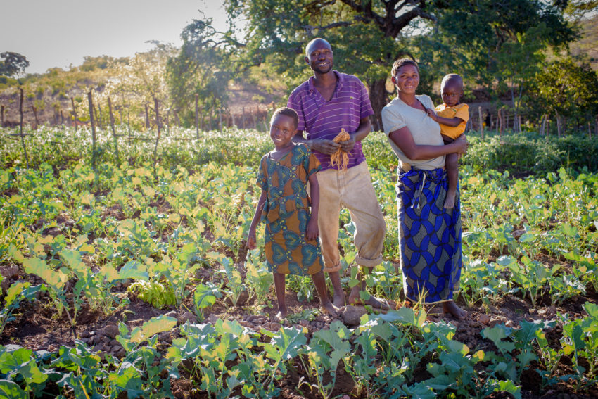 Drought is making life difficult for small-scale farm families in Zambia. Nine-year-old Joyce Moono stands in the garden with members of her family: her father, Milton Mudenda, mother, Seida Hamalambo, and 2-year-old brother, Caston Moono.