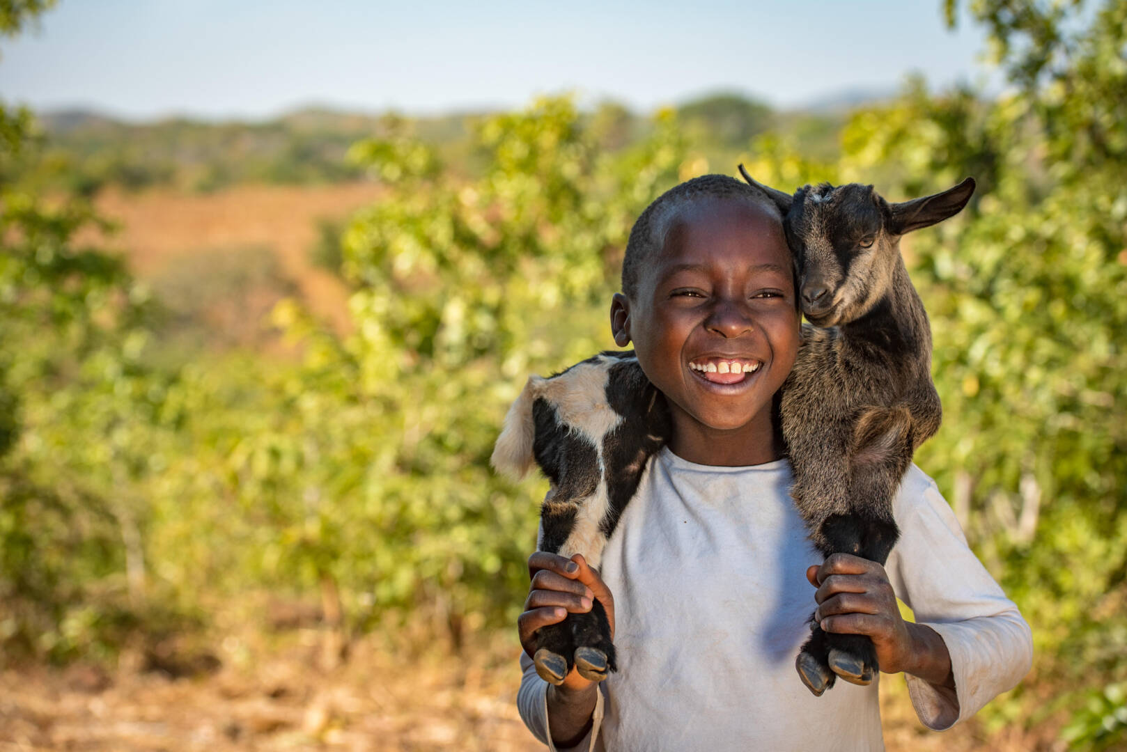 5 reasons goats are the G.O.A.T. | World Vision