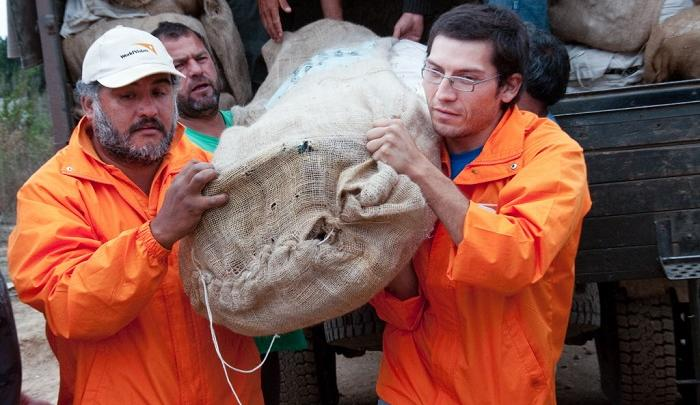 World Vision responds to 2010 earthquake in Chile