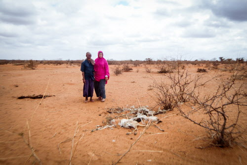 Drought, food insecurity could lead to another famine in Somalia
