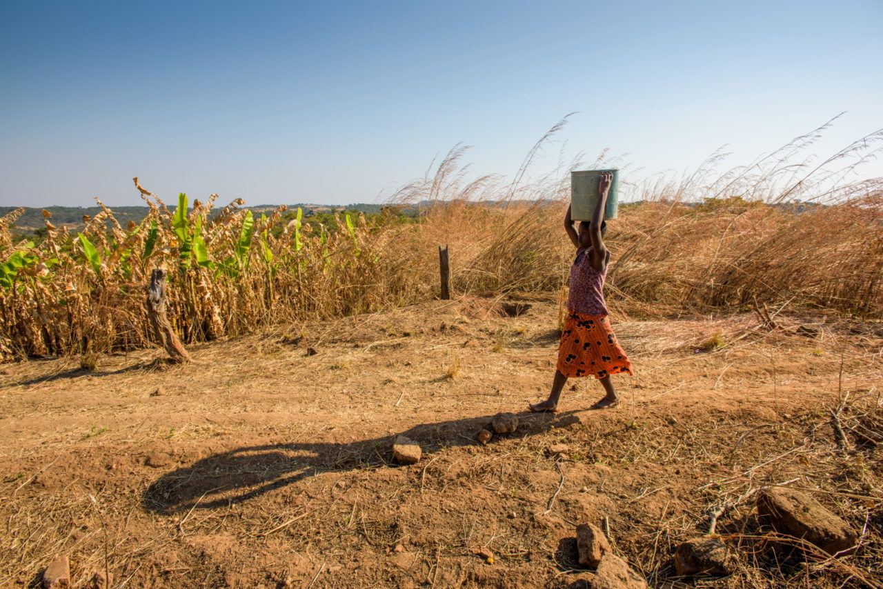 Though she fears being abducted and killed, 11-year-old Nivesh fetches water from a stream in southern Zambia three times a day to keep her family alive.