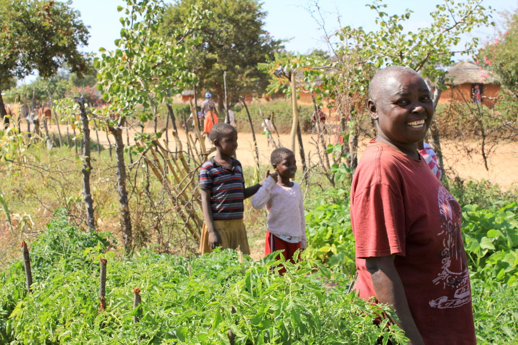8-year-old Mary shows off her garden in Zimbabwe. PHOTO:World Vision/Leonard Makombe