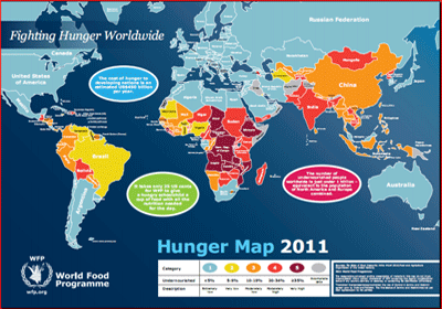 Examining the Global Food Crisis (PDF, 2011)