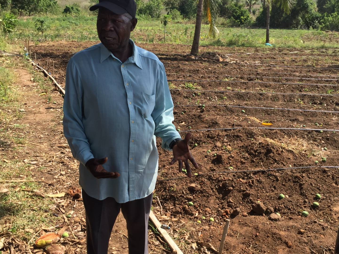 Christian Kayombo shows off his current cassava crop. © 2016 World Vision/photo by Silas Urio