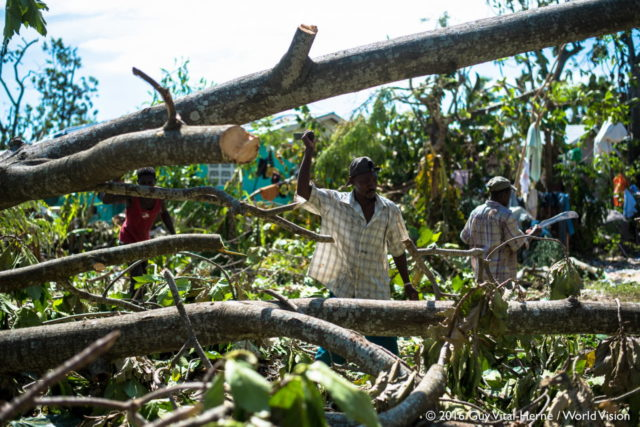 Haiti's lost crops estimated at $600 million after Hurricane Matthew.
