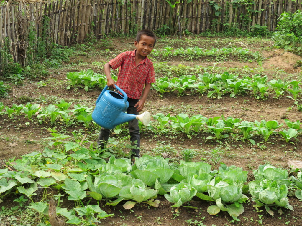 little boy watering vegetables